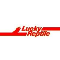 Lucky Reptile