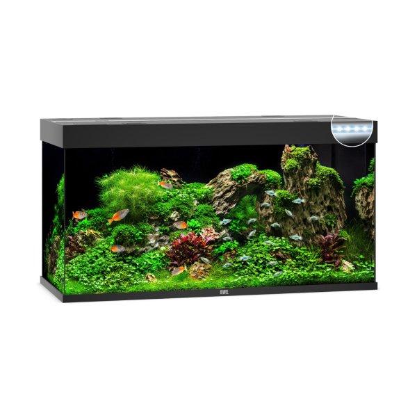 JUWEL Rio 350 LED Aquarium ohne Schrank