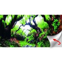HOBBY Green Dream & Wooden Sky Fotorückwand