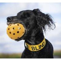 TRIXIE Lochball für blinde Hunde